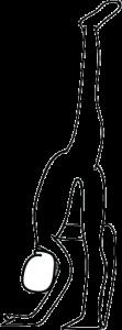 standing split line drawing